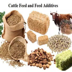 Animal Feeds & Products